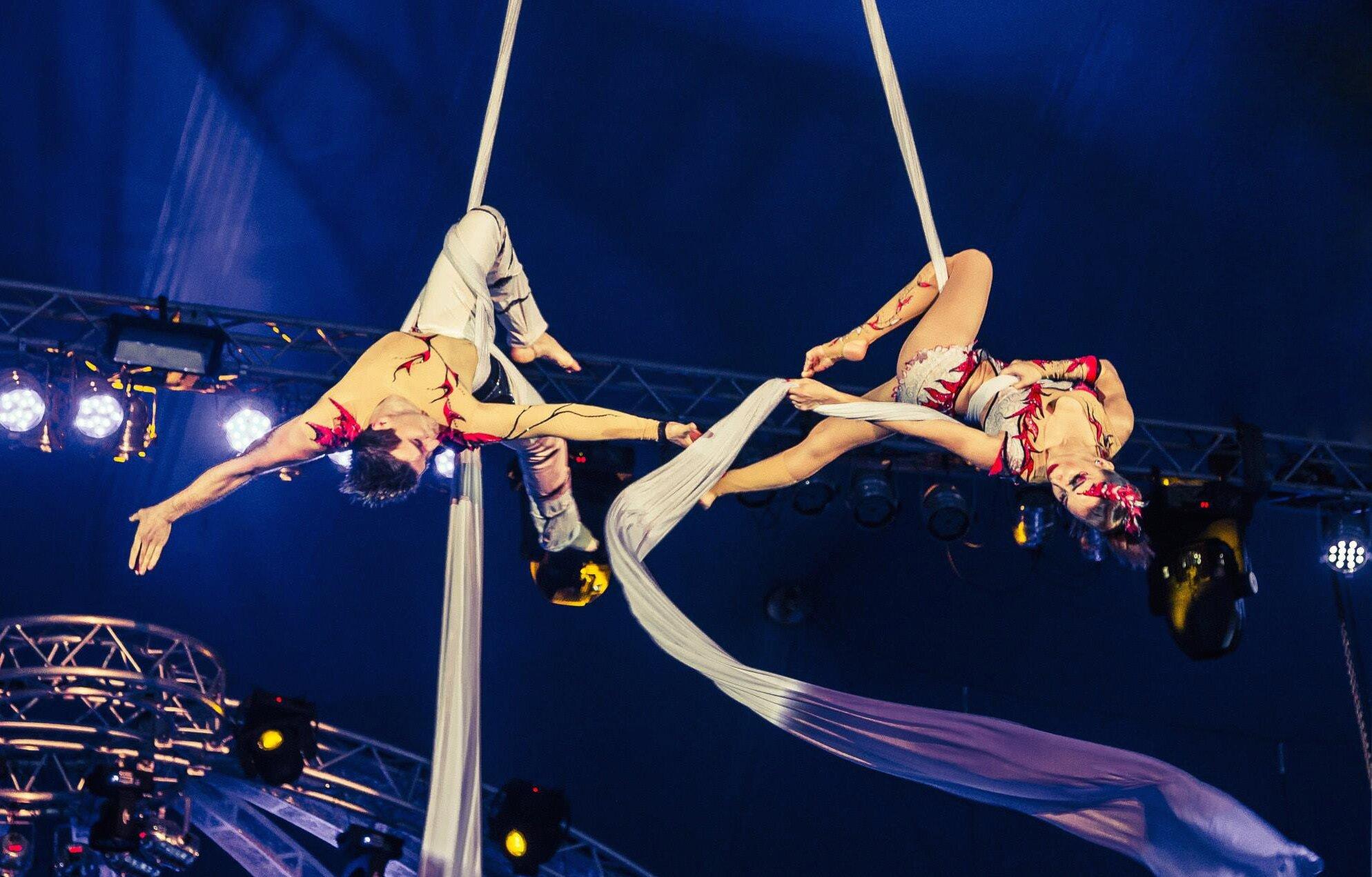 Воздушные гимнасты | Aerialists